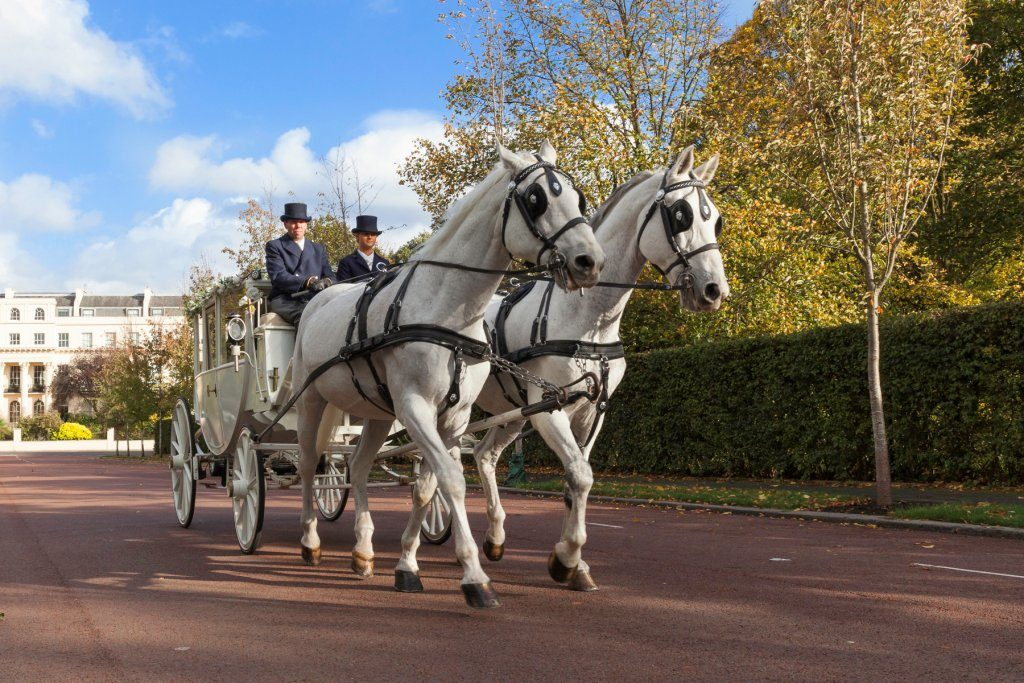 Horse and Carriage, Wedding Planner In kent